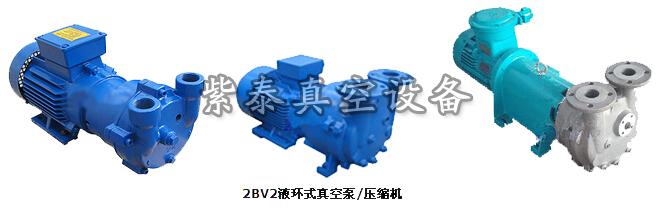 2BV系列式水环真空泵及压缩机